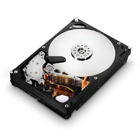 "Hitachi Deskstar 7K1000.C - 3.5"" - 250 Go - SATA II 3GB/S"
