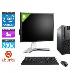 Lenovo ThinkCentre M81 SFF + Ecran 19'' - Ubuntu / Linux