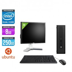 "HP EliteDesk 800 G1 SFF - Ubuntu / Linux + Écran 19"""