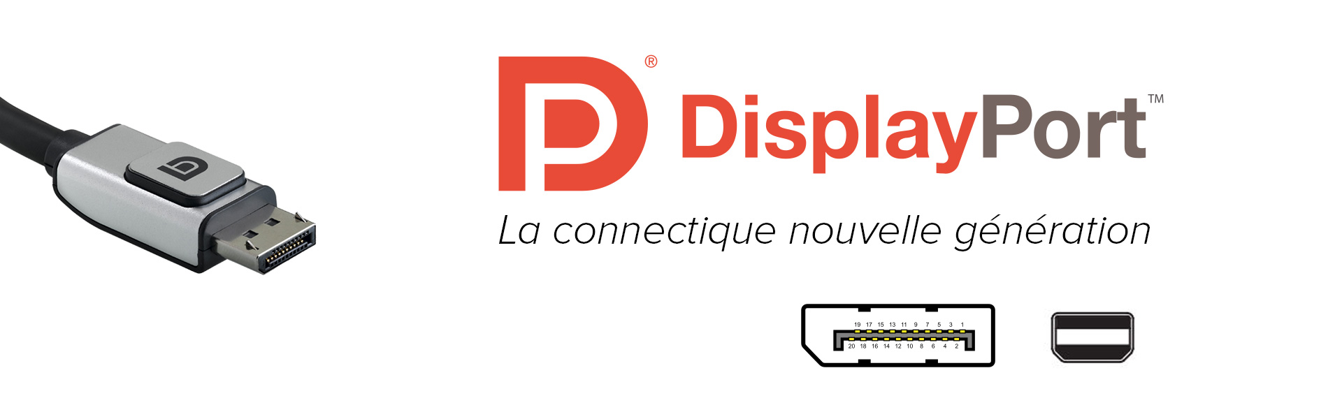 banniere-dp-trade-discount-