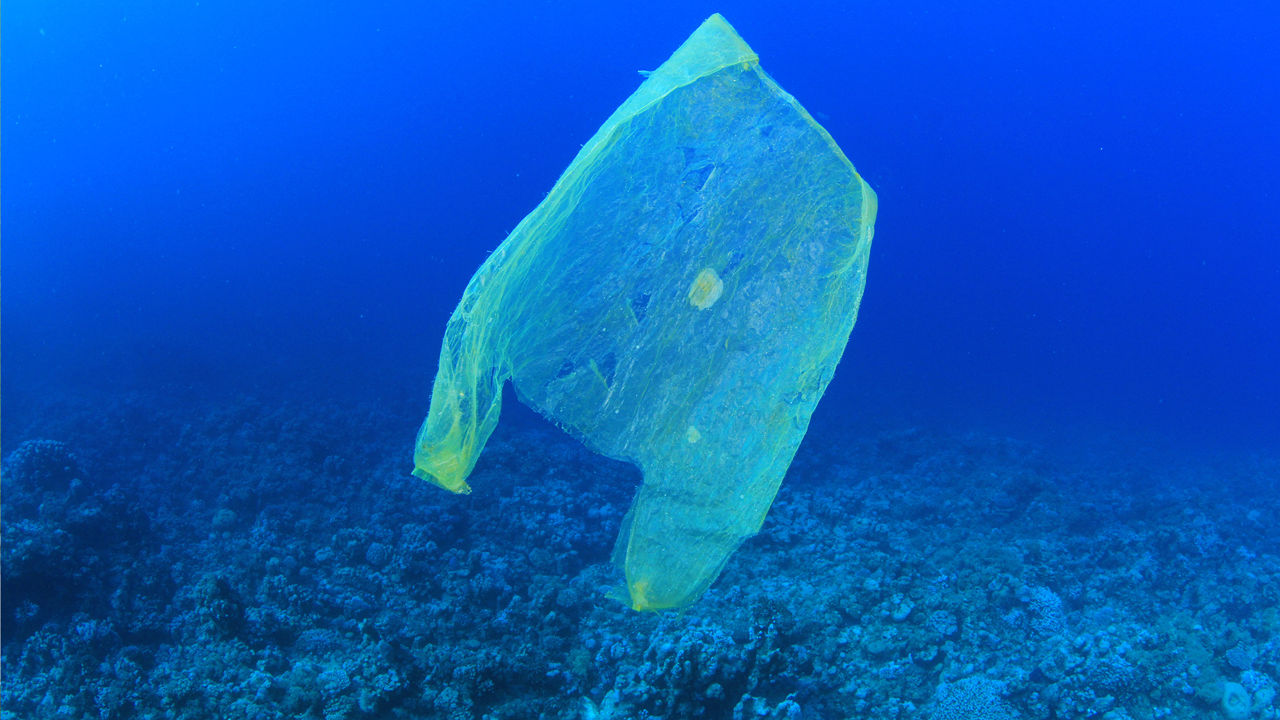 Sac plastique pollution mer