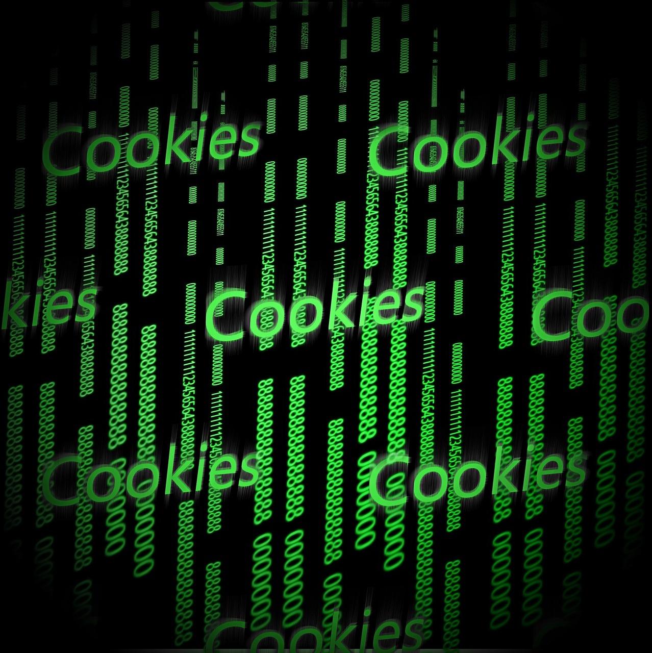 Image figurant les cookies sur le web